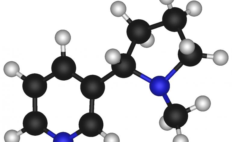 Nicotine_3D_Model