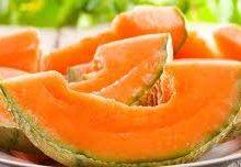 Dot Vape – Melon Cool Mint (premix)