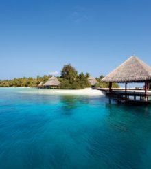 Dot Vape – Tropical Island (premix)