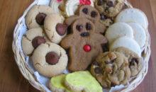 Premix by Go Bears – Captain Cookie
